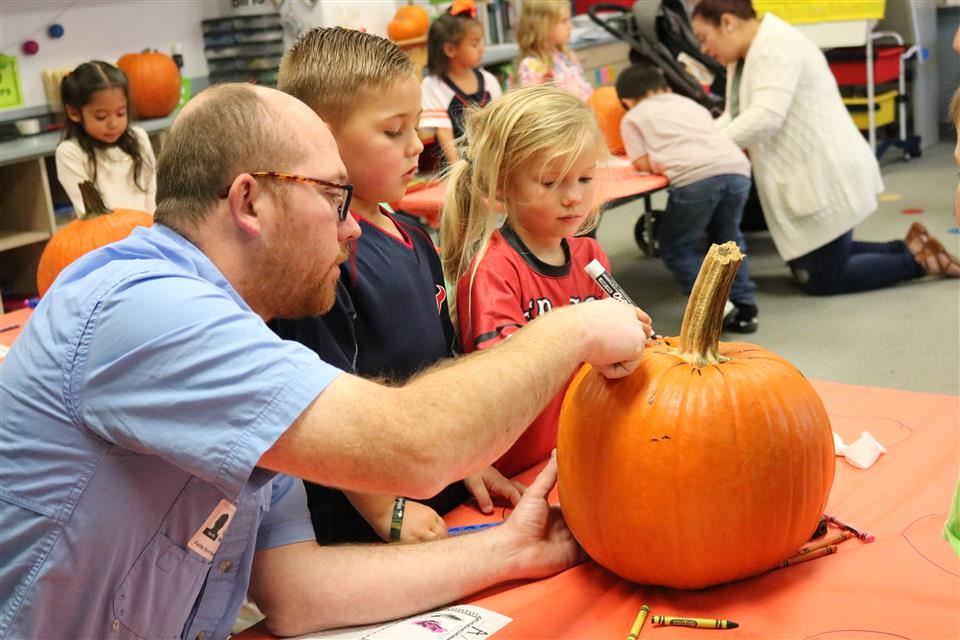 Photo of students participating in pumpkin investigations